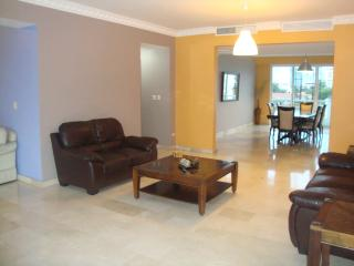 In Piantini next to Acropolis Mall, 3000 sq ft apt - Santo Domingo vacation rentals