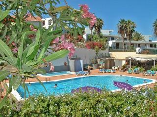 Playa de Las Americas Ocean view 1 - Adeje vacation rentals