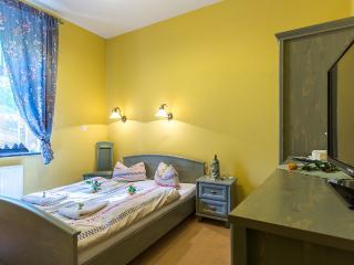 Nice Villa with Internet Access and Corporate Bookings Allowed - Szklarska Poreba vacation rentals