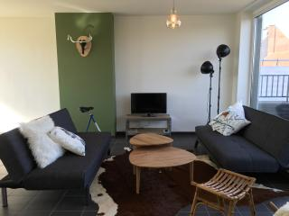 Perfect 2 bedroom Oudenaarde Condo with Satellite Or Cable TV - Oudenaarde vacation rentals