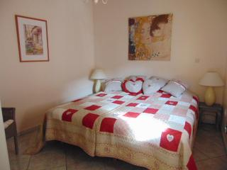 Modern 1 Bedroom Ivy Apartment - Ventenac-en-Minervois vacation rentals