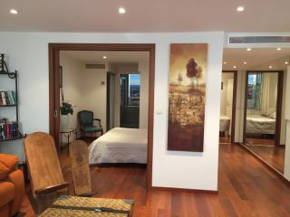 Majestic of Croisette - Cannes vacation rentals