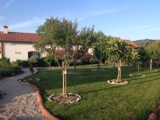 Comfortable Villa with Internet Access and A/C - Martinchel vacation rentals