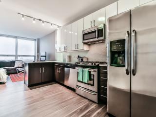 Arkadia Studio - Chicago vacation rentals