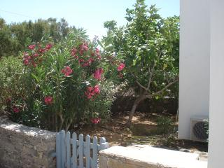 AVLOMONAS 1 - Livadi vacation rentals