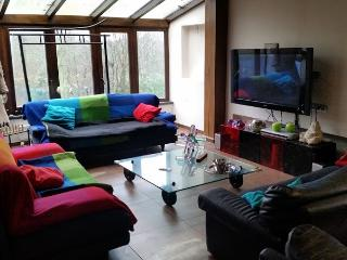 villa close the airport Brussels south - Fleurus vacation rentals