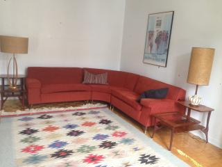 Great appartement on the Plateau ! - Montreal vacation rentals