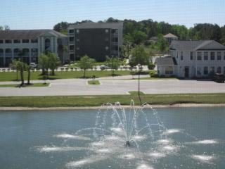 Beautiful North Myrtle Beach Condo - Little River vacation rentals