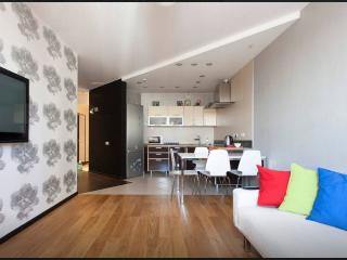 Wonderful apartment in city centre - Moscow vacation rentals
