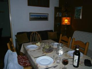 Apartment for Skiing or Walking - Aussois vacation rentals