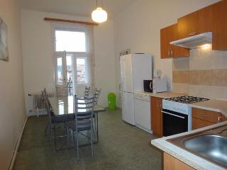 Cozy Condo with Internet Access and DVD Player - Prague vacation rentals