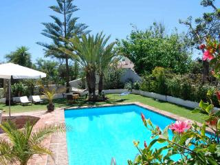 Wonderful House with Internet Access and A/C - Elviria vacation rentals