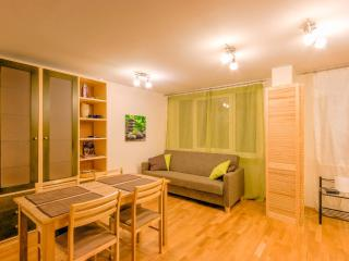 Private apartment in centre of city - Tartu vacation rentals