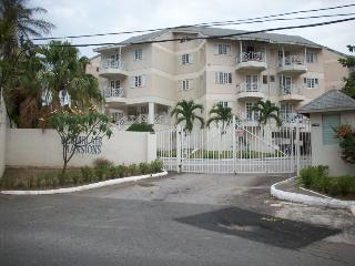 Beautiful vacation apartment, business or pleasure - Kingston vacation rentals