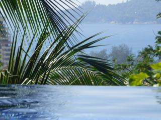 Nice Villa with Internet Access and Microwave - Patong vacation rentals