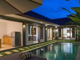 Lotus 2Bedroom Villa Close to Sanur Beach - Sanur vacation rentals