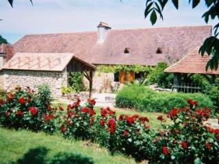 Nice House with Internet Access and House Swap Allowed - Mouleydier vacation rentals