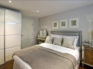 Stunning brand new 1 bed penthouse - London vacation rentals