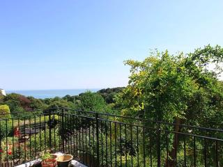 A spectacular seaside holiday home with sea views - St Margaret's Bay vacation rentals