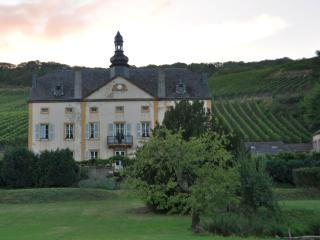 Mosel valley private Suite in a Chateau - Sierck-les-Bains vacation rentals