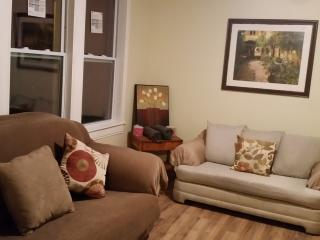 huge 4 bedrm apt Near downtown/south loop - Chicago vacation rentals