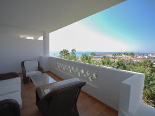 Nice Condo with Television and Balcony - Nueva Andalucia vacation rentals