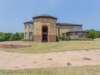 Luxury living with chef and driver  9885 sqft. - Cedar Hill vacation rentals