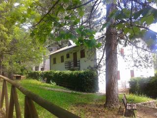 Villaggio Barilari - Casa Arancione - Minucciano vacation rentals