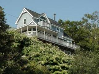 View From Water - Bayside Sunshine Cottage with Water Views Sleeps 6 - Northport - rentals