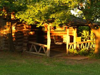 1 bedroom Cabin with Long Term Rentals Allowed (over 1 Month) in Hector - Hector vacation rentals