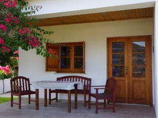 Perfect 1 bedroom Condo in Kalavasos - Kalavasos vacation rentals