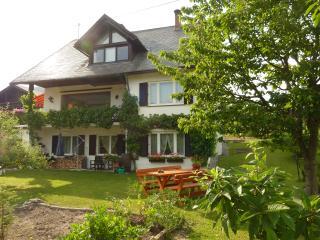 2-3 pers. app. met open haard,  eigen terras. - Weissbriach vacation rentals