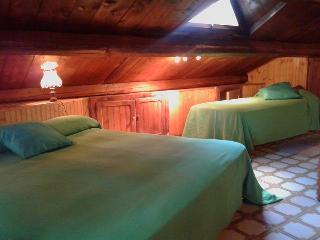 Villaggio Barilari - Casa Verde - Minucciano vacation rentals