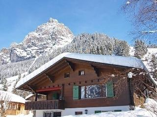 Comfortable House with Internet Access and Dishwasher - Kandersteg vacation rentals