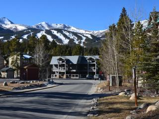 Perfectly Located in Breckenridge, Colorado - Breckenridge vacation rentals