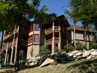The Scarboro- 7 BR on Sugar Mtn w/VIEWS, Hot Tub, GameRm, Deck w/ Fire Place - Banner Elk vacation rentals