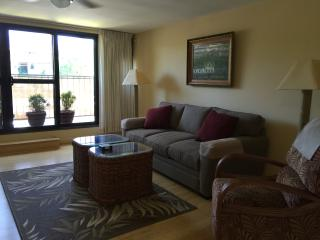 aloha on the ocean - Lahaina vacation rentals