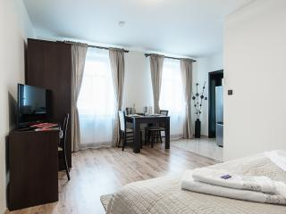 Cajkovskij Apartments - Brno vacation rentals