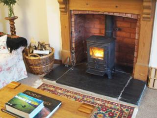 Y Cleddau  - great walks, local pub - 396645 - Johnston vacation rentals
