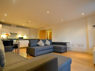 Large Two Bedroom Two Bathroom Apartment - London vacation rentals