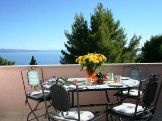 Charming & spacious apartment with panoramic sea view balcony, 250m to beach - Okrug Gornji vacation rentals