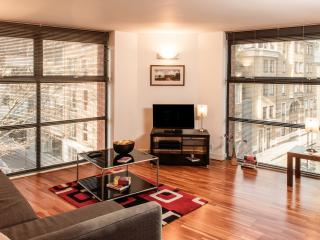 Huge Two Bedroom Two Bathroom Apartment - London vacation rentals