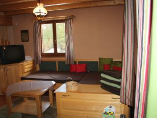 Beautiful Chalet Bear WILI HUNTER - Donovaly vacation rentals