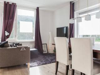 Bright studio near city centre - Utrecht vacation rentals