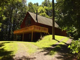 Cozy 3 bedroom House in Berkeley Springs - Berkeley Springs vacation rentals