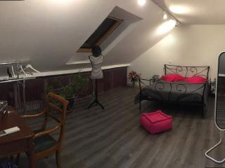 logement lumineux à 15 mn de Paris - La Queue-en-Brie vacation rentals