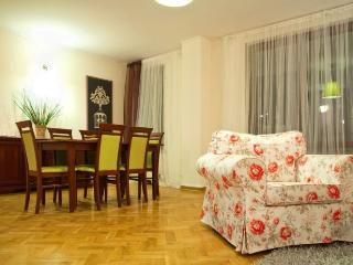 Quality apartment in center of Warsaw - Warsaw vacation rentals