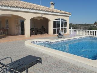 Detached villa with private pool - Elche vacation rentals