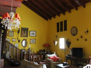 Bright House with Internet Access and Children's Pool - Estarreja vacation rentals