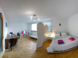 bright apartment - WIFI - city center & fairy - Nuremberg vacation rentals
